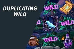 Duplicating Wild