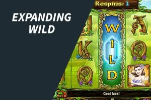 Expanding Wild