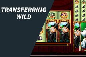 Transferring Wild